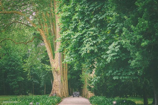 Fotografía para bodas. La Casona de las Fraguas. Fernando Baños