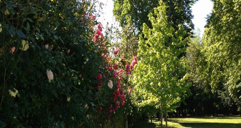 jardines para bodas, La Casona de las Fraguas